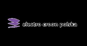 Electro Croon Polska